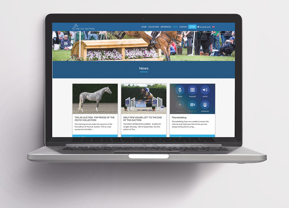 The A.D. Auction - Eventing horses auction Italy